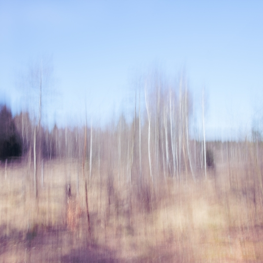 Sweden, April 2018 Impressionist photography utilizing intentional camera movement. © Anders Stangl Photography