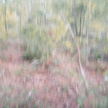 Sweden, August 2018 Impressionist photography utilizing intentional camera movement. Shot with Fujifilm X-E2 and a Industar -69 28mm 2.8 lens© Anders Stangl Photography