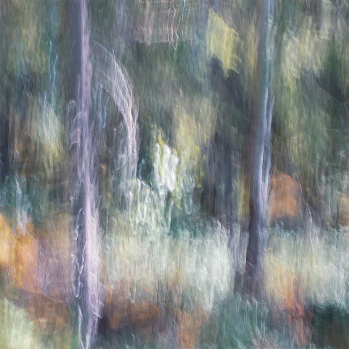 Sweden June 2018 Impressionist landscape photography utilizing intentional camera movement. Copyright © Anders Stangl Photography