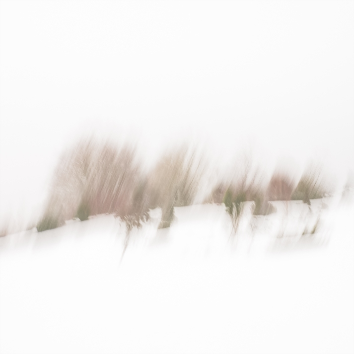Sweden, January 2019 Impressionist photography utilizing intentional camera movement. © Anders Stangl Photography