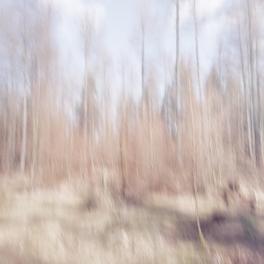A Study In Spring Light - Volume Three