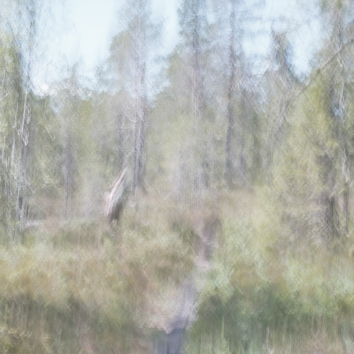 Sweden June 2018 Impressionist photography utilizing intentional camera movement. Copyright © Anders Stangl Photography