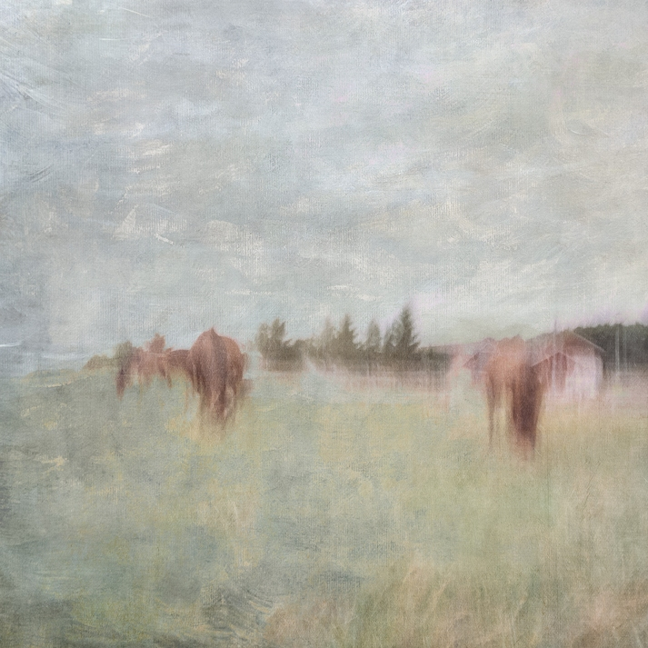Impressionist abstract rural scene utilizing intentional camera movement. Volume 12 in this series