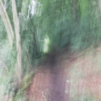 Impressions - Volume Forty Three