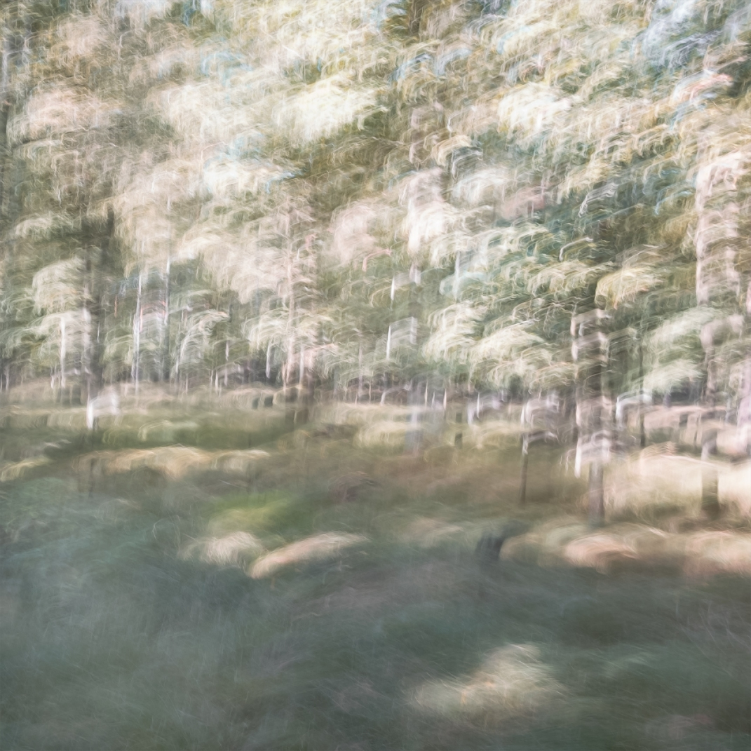 Sweden, September 2018 Impressionist photography utilizing intentional camera movement. © Anders Stangl Photography