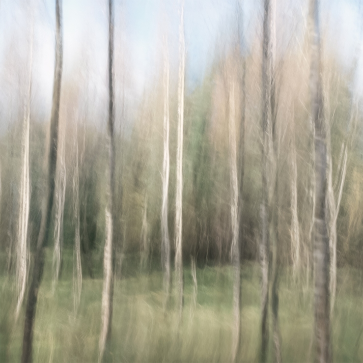 Sweden, October 2017Impressionist photography utilizing intentional camera movement.  © Anders Stangl Photography