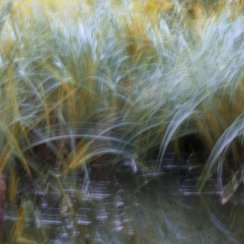 Sweden, May 2018 Impressionist photography utilizing intentional camera movement. © Anders Stangl Photography