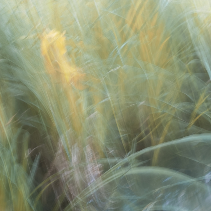 Sweden, June 2018