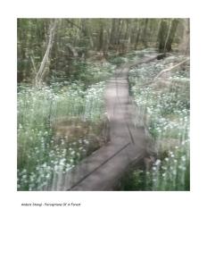 Impressions - Volume Twenty-Seven