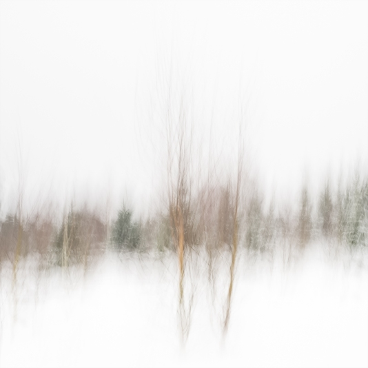 Sweden, January 2019