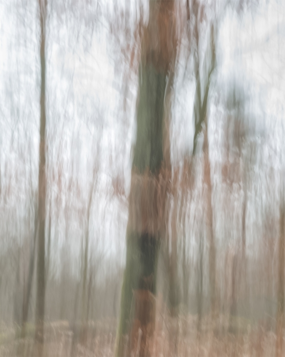 Impressions - Volume Five