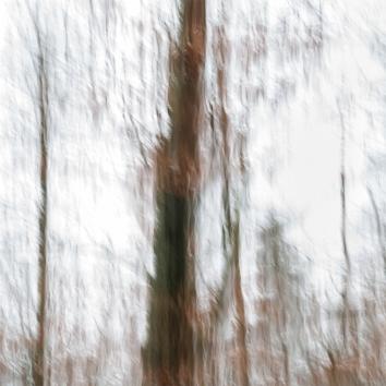 Impressions - Volume Ten