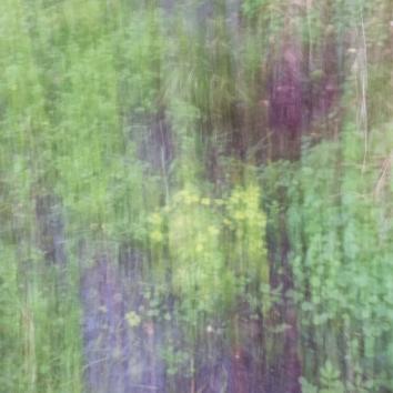 Impressions - Volume Twenty-One