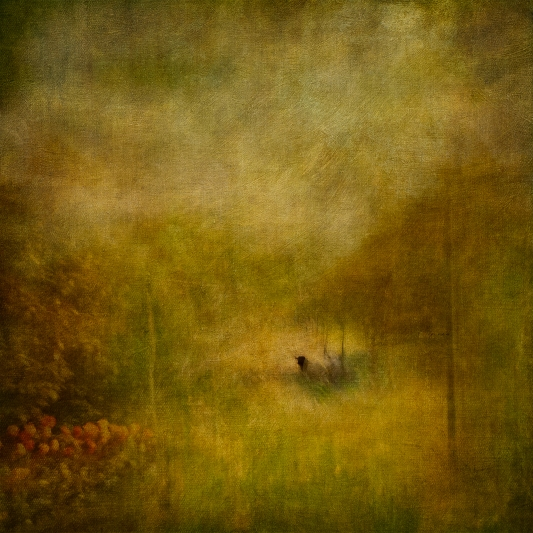 Impressionistic forest scene. Volume 41 in this series