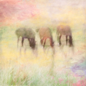 Impressionistic scene, horses in a summer meadow