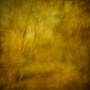 Impressionistic forest scene. Volume 39 in this series