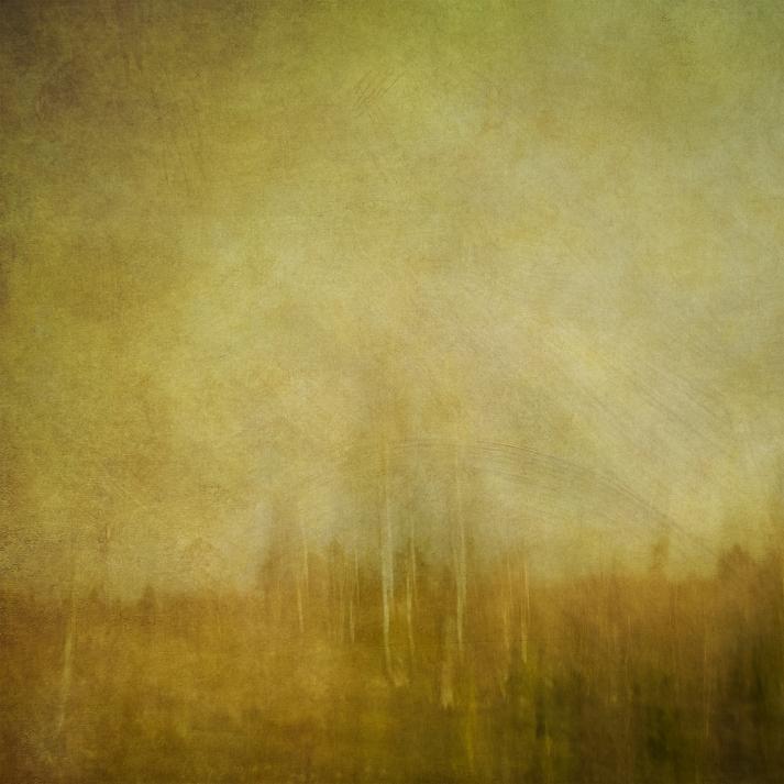 Impressionistic rural woodland scene
