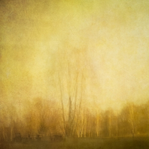 Impressionistic rural scene . Single intentional camera movement exposure and texture layers.
