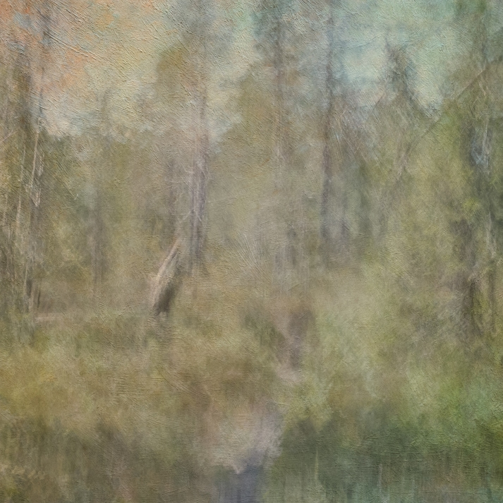 Impressionistic summer scene .Single intentional camera movement exposure and texture layers. Volume 32 in this series.