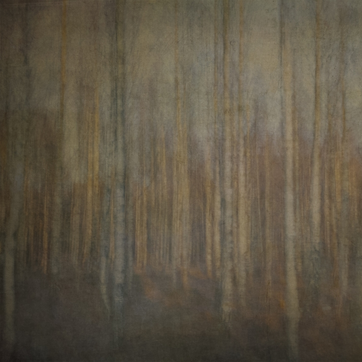 Impressionistic forest scene . Single intentional camera movement exposure and texture layers.
