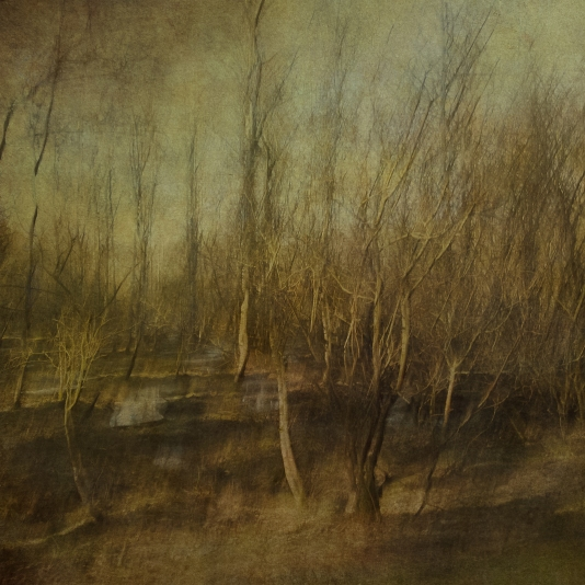 Impressionist spring forest scene. Single intentional camera movement exposure and texture layers.