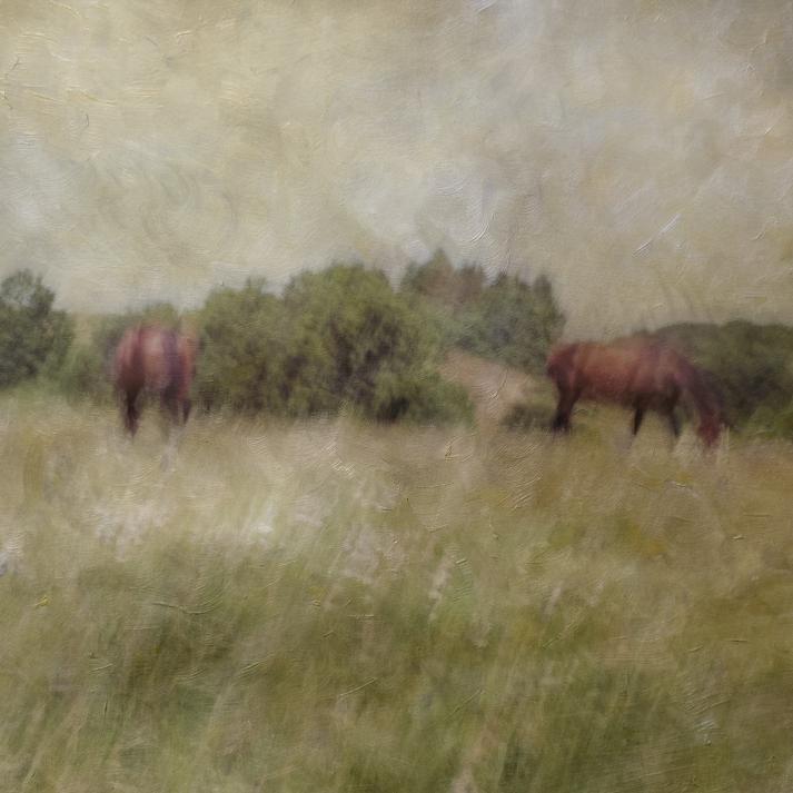 Impressionist rural scene. Volume 18 in this series