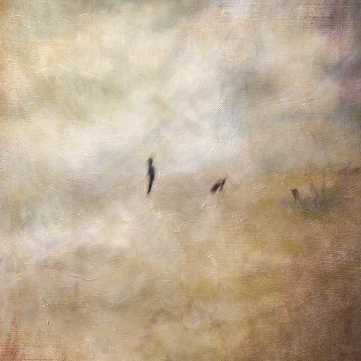Impressionist scene by the coastline. Volume 59