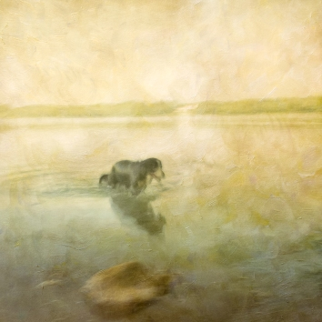 Impressionist scene of a dog in a lake. Volume 40 in this series