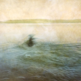 Impressionist abstract scene of a dog in a lake. Volume 45 in this series