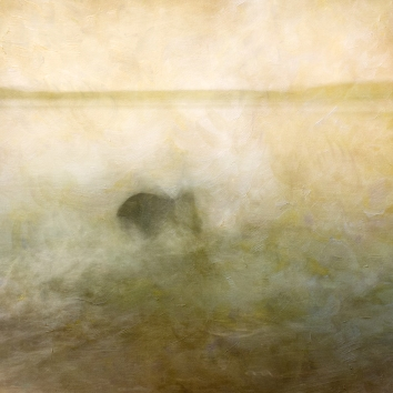 Impressionist scene of a dog in a lake. Volume 41 in this series