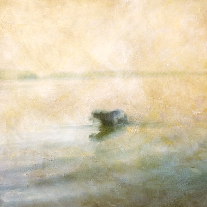 Impressionist scene of a dog in a lake. Volume 43 in this series
