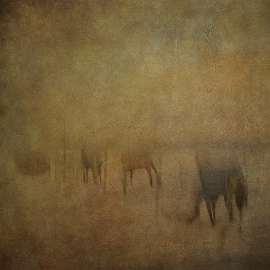 Impressionist rural scene. Volume 4 in this series