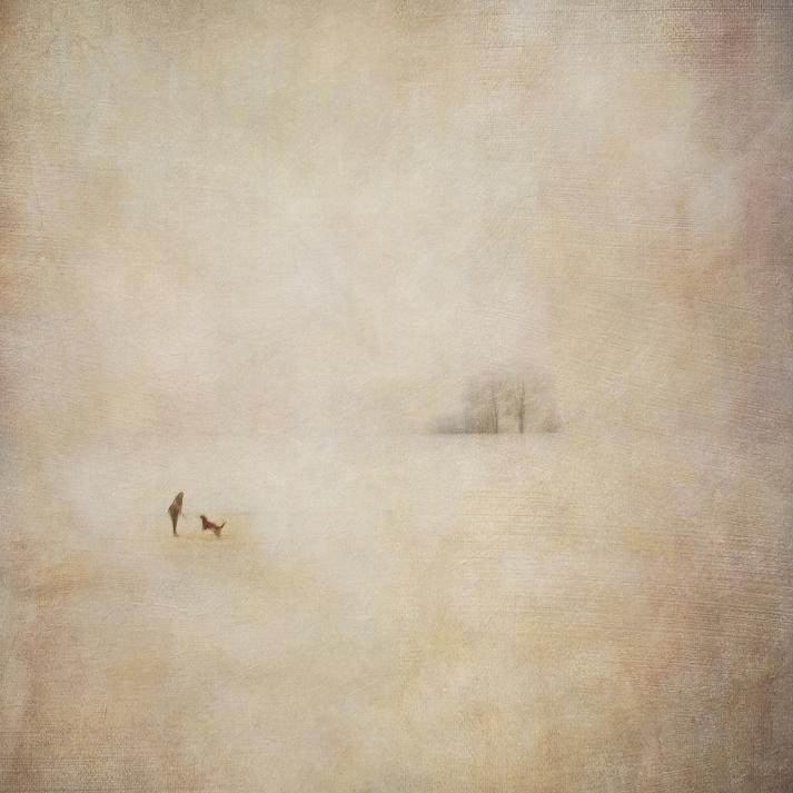 Impressionist minimalistic rural scene, composite of two exposures.Volume 71 in this series