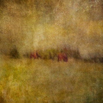 Impressionist rural scene, horses in a summer meadow. Volume 72 in this series