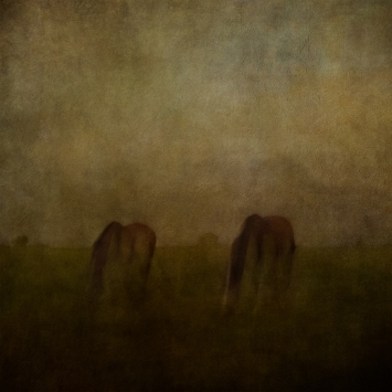 Impressionist rural scene. Volume 6 in this series