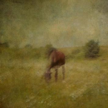 Impressionist rural scene. Volume 16 in this series
