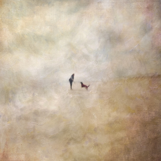 Impressionist scene, woman with a dog. Volume 61