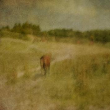 Impressionist rural scene. Volume 28 in this series