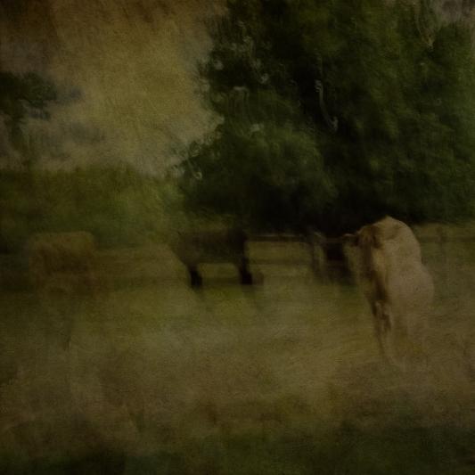 Impressionist rural scene. Volume 24 in this series