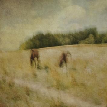 Impressionist rural scene. Volume 21 in this series