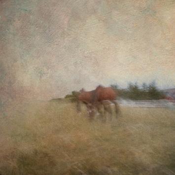 Impressionist rural scene. Volume 26 in this series