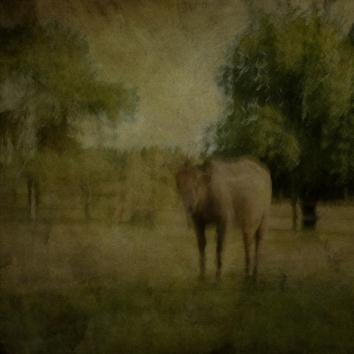 Impressionist rural scene. Volume 23 in this series