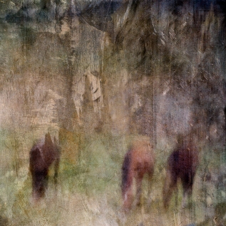 Impressionist rural scene of horses in a summer meadow. Volume 4 in this series