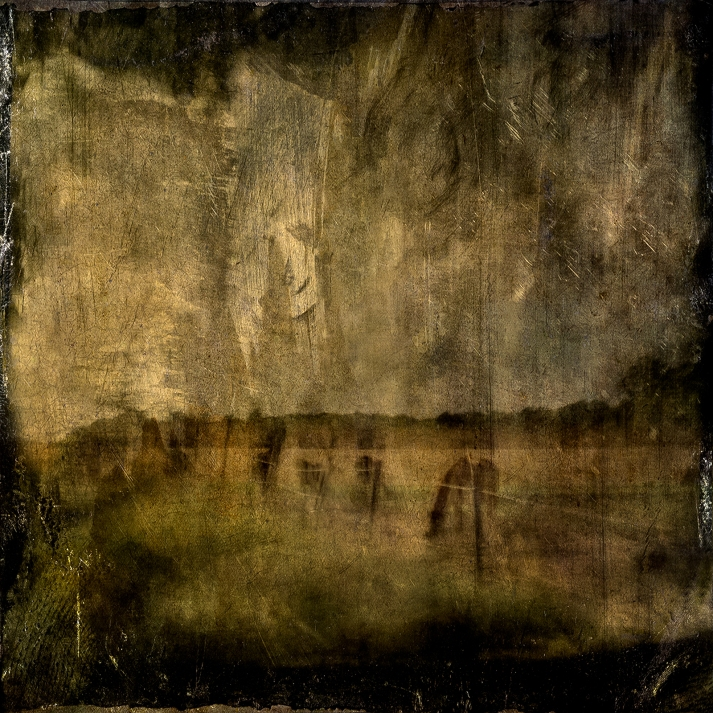Impressionist abstract rural scene of horses in a meadow. Volume 11 in this series