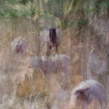 Impressionist abstract photography. Volume 1 in this series