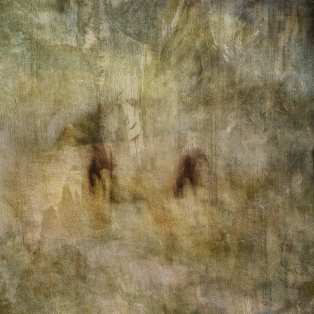 Impressionist abstract rural scene of horses in a summer meadow. Volume 22 in this series