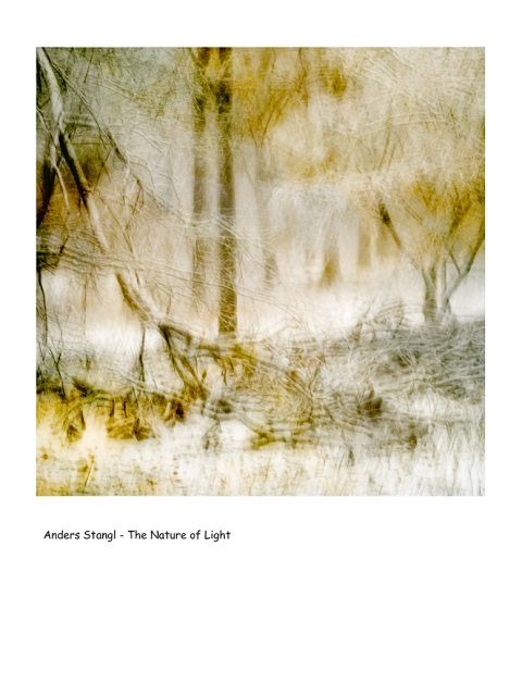 Abstract photography utilizing intentional camera movement