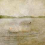 Impressionistic summer scene by a lake. Volume 49